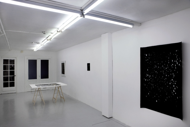 Ran Zhang, Synesthesia, overview_Nov 2011, Apice for Artists